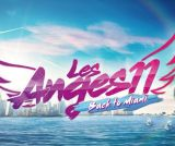 Les Anges 11 - Back To Miami